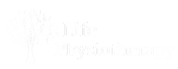 life physiotherapy logo all white
